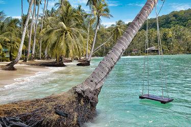 Bild mit Palmen, Inseln, Meerblick, Insel, asien, südostasien, Thailand, Thailand, Koh Kood