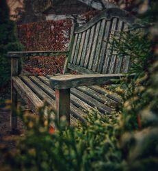 Bild mit Parks, Holz, Holzstruktur, altes Holz, Stadtpark, Parkanlage, Parkbank