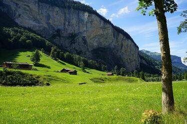 Grüne Wiese und Felswand Lauterbrunnen Schweiz