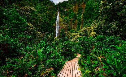 Holzsteg zu einem Wasserfall auf Maui, Hawaii