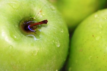 Bild mit Früchte, Lebensmittel, Essen, Frucht, Apfelbild, grüner Apfel, grüne Äpfel, Küchenbild, Apfel, Apfel, KITCHEN, Küche