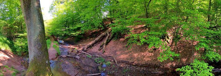 Bild mit Natur,Pflanzen,Landschaften,Bäume,Gewässer,Wälder,Flüsse,Felsen,Orte,Parks,Nationalparks