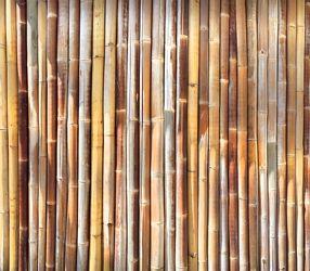 Bild mit Gegenstände,Materialien,Holz,Bambus,bamboo,Bambusmatte,bambusstruktur,Struktur
