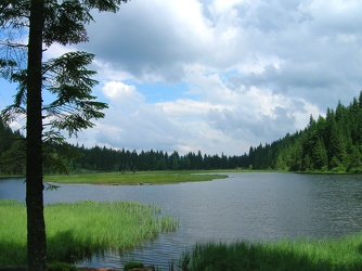 Bild mit Natur,Wasser,Grün,Gräser,Bäume,Gewässer,Küsten und Ufer,Seen,Flüsse,Teiche,Stauseen,Bergsee,See