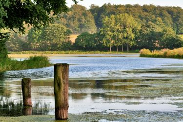 Bild mit Natur,Elemente,Wasser,Pflanzen,Gräser,Landschaften,Himmel,Bäume,Gewässer,Küsten und Ufer,Seen,Flüsse,Reflexion,Teiche
