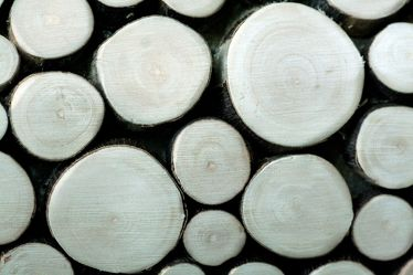 Bild mit Gegenstände,Materialien,Holz,Holz,Struktur,Holzstruktur,Hölzer