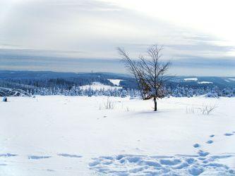 Winterday 5
